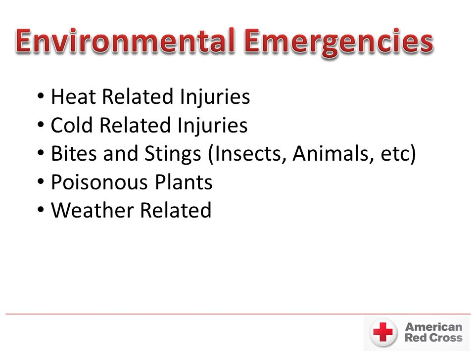 Heat Related Injuries Cold Related Injuries Bites and Stings (Insects, Animals, etc) Poisonous Plants Weather Related