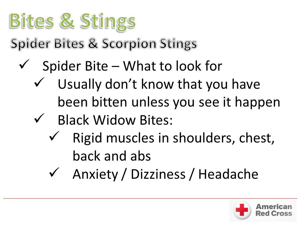 Spider Bite – What to look for Usually don't know that you have been bitten unless you see it happen Black Widow Bites: Rigid muscles in shoulders, chest, back and abs Anxiety / Dizziness / Headache