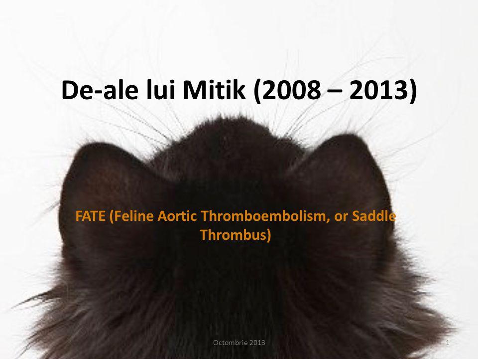 De-ale lui Mitik (2008 – 2013) FATE (Feline Aortic Thromboembolism, or Saddle Thrombus) Octombrie 20131