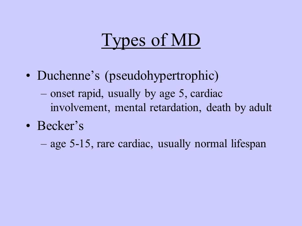 Types of MD Duchenne's (pseudohypertrophic) –onset rapid, usually by age 5, cardiac involvement, mental retardation, death by adult Becker's –age 5-15