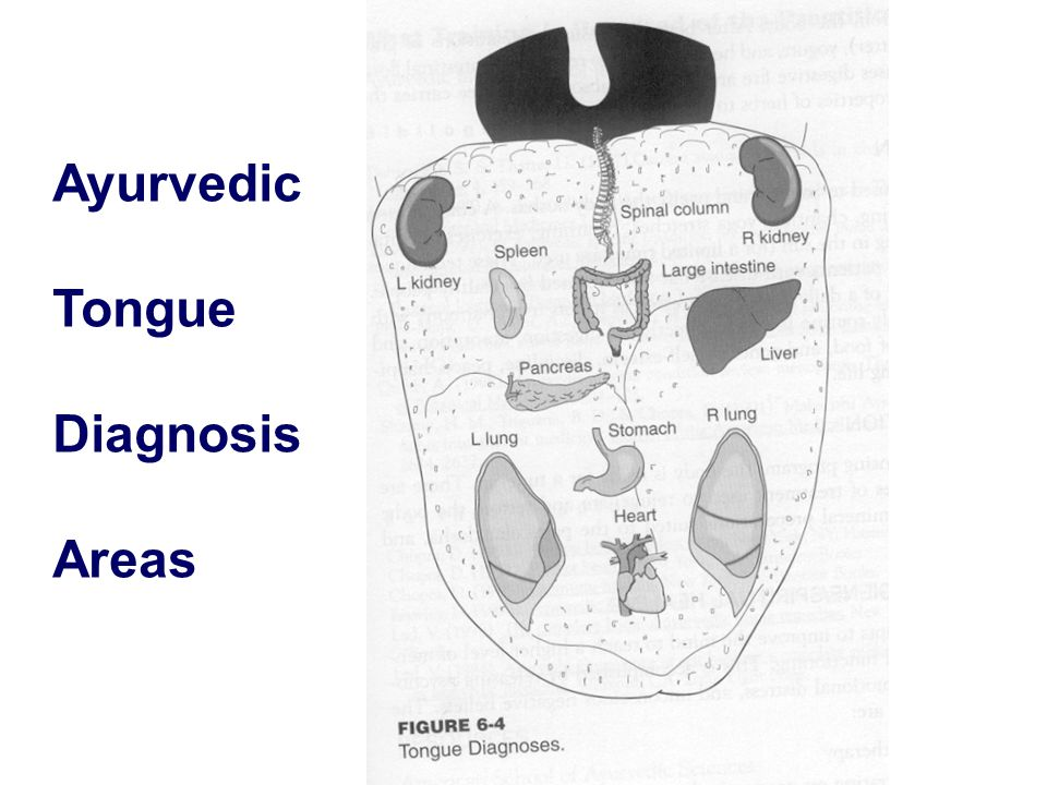 Ayurvedic Tongue Diagnosis Areas