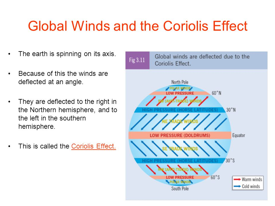 Global Winds and the Coriolis Effect The earth is spinning on its axis. Because of this the winds are deflected at an angle. They are deflected to the