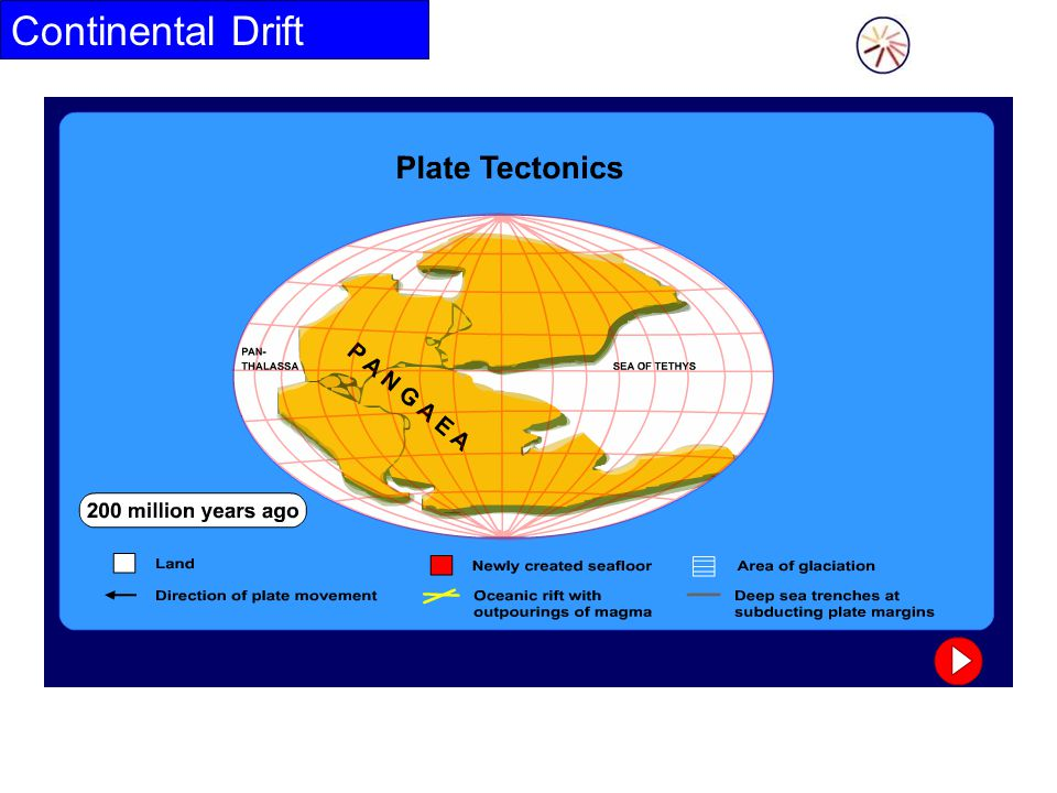 Evidence for Continental Drift The theory is supported by several pieces of evidence.