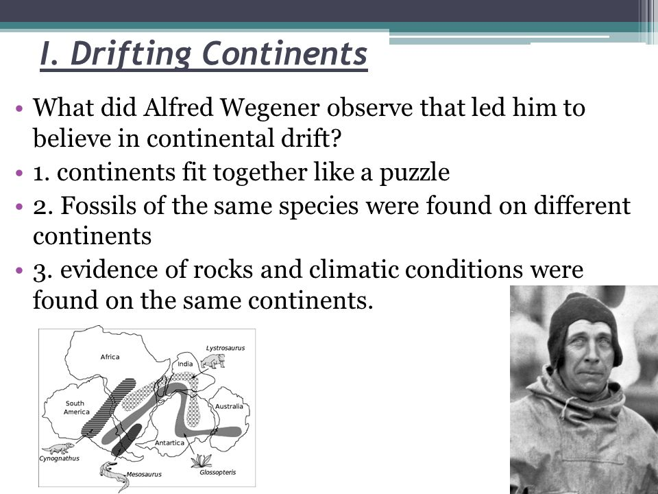 I. Drifting Continents What did Alfred Wegener observe that led him to believe in continental drift? 1. continents fit together like a puzzle 2. Fossi