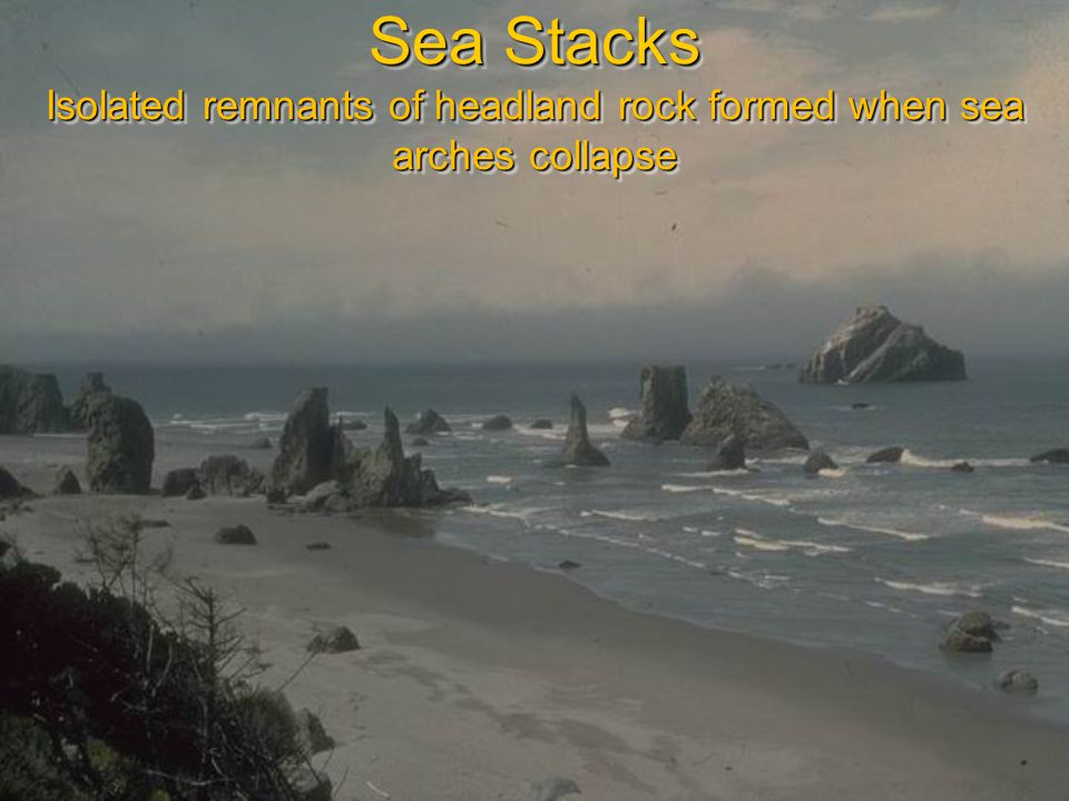 Sea Stacks Isolated remnants of headland rock formed when sea arches collapse