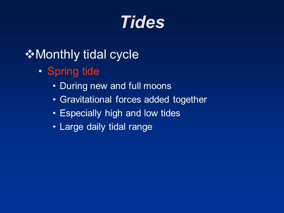 Tides  Monthly tidal cycle Spring tide During new and full moons Gravitational forces added together Especially high and low tides Large daily tidal range