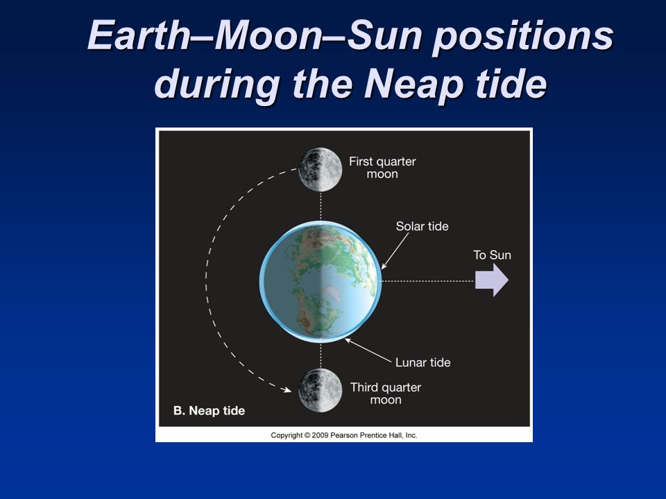 Earth–Moon–Sun positions during the Neap tide