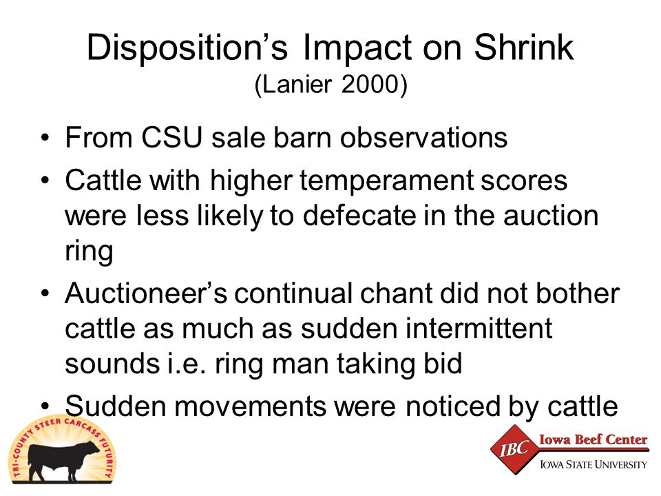 Disposition's Impact on Shrink (Lanier 2000) From CSU sale barn observations Cattle with higher temperament scores were less likely to defecate in the auction ring Auctioneer's continual chant did not bother cattle as much as sudden intermittent sounds i.e.