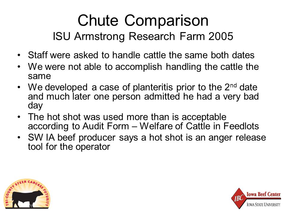 Chute Comparison ISU Armstrong Research Farm 2005 Staff were asked to handle cattle the same both dates We were not able to accomplish handling the cattle the same We developed a case of planteritis prior to the 2 nd date and much later one person admitted he had a very bad day The hot shot was used more than is acceptable according to Audit Form – Welfare of Cattle in Feedlots SW IA beef producer says a hot shot is an anger release tool for the operator