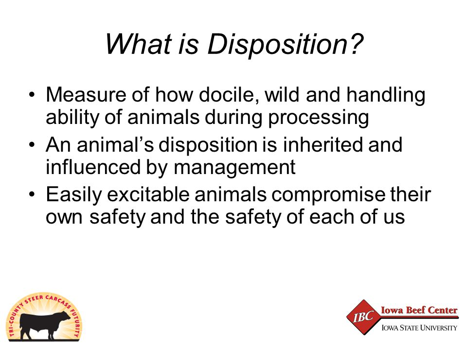 What is Disposition.