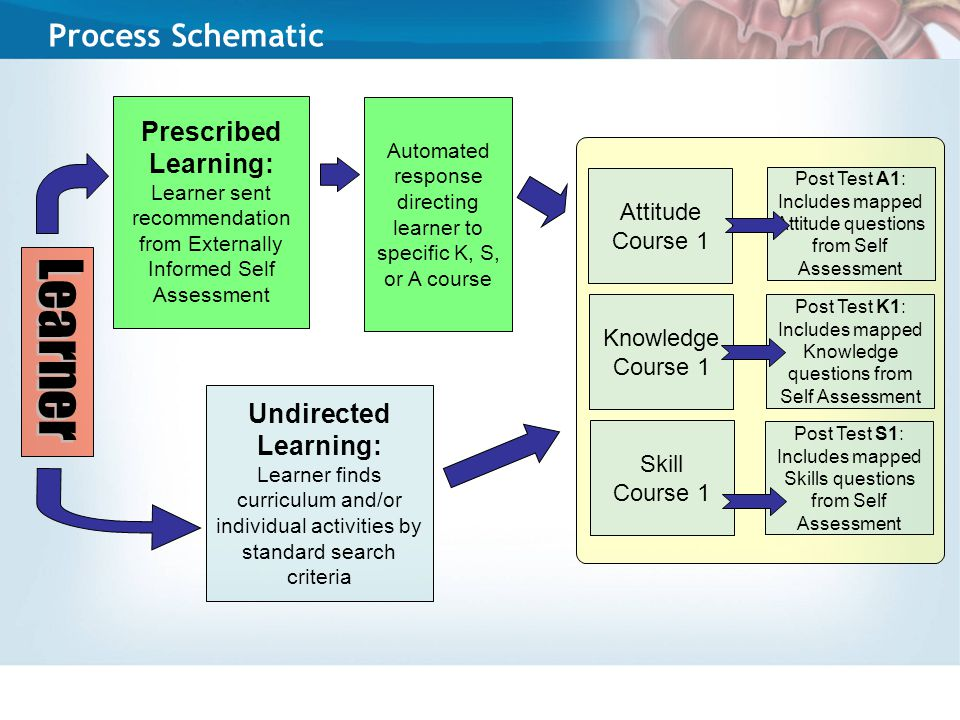 Process Schematic Prescribed Learning: Learner sent recommendation from Externally Informed Self Assessment Undirected Learning: Learner finds curriculum and/or individual activities by standard search criteria Attitude Course 1 Knowledge Course 1 Skill Course 1 Post Test A1: Includes mapped Attitude questions from Self Assessment Automated response directing learner to specific K, S, or A course Post Test S1: Includes mapped Skills questions from Self Assessment Post Test K1: Includes mapped Knowledge questions from Self Assessment