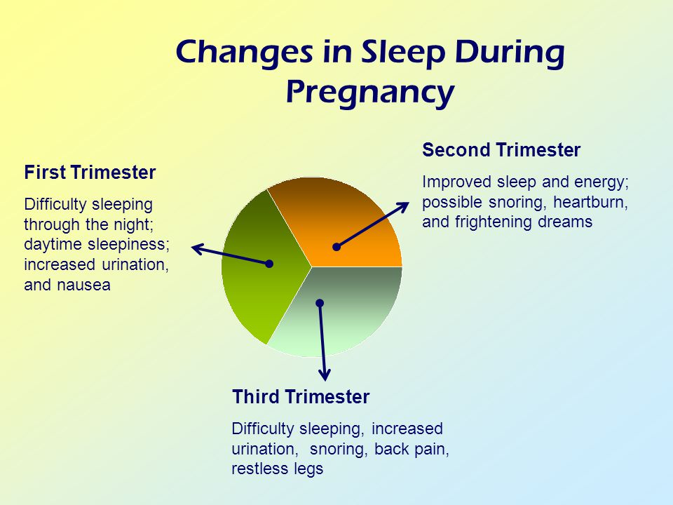 Changes in Sleep During Pregnancy Second Trimester Improved sleep and energy; possible snoring, heartburn, and frightening dreams Third Trimester Difficulty sleeping, increased urination, snoring, back pain, restless legs First Trimester Difficulty sleeping through the night; daytime sleepiness; increased urination, and nausea
