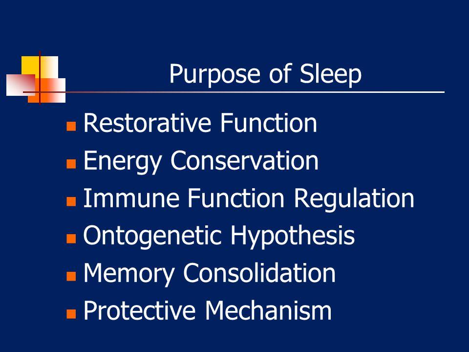 Purpose of Sleep Restorative Function Energy Conservation Immune Function Regulation Ontogenetic Hypothesis Memory Consolidation Protective Mechanism