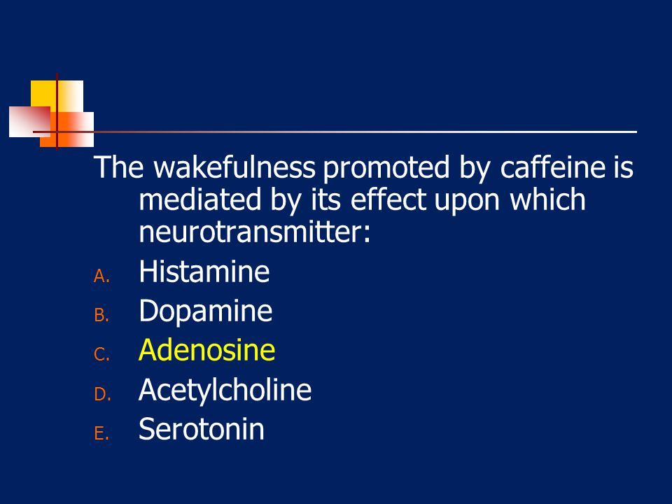 The wakefulness promoted by caffeine is mediated by its effect upon which neurotransmitter: A. Histamine B. Dopamine C. Adenosine D. Acetylcholine E.