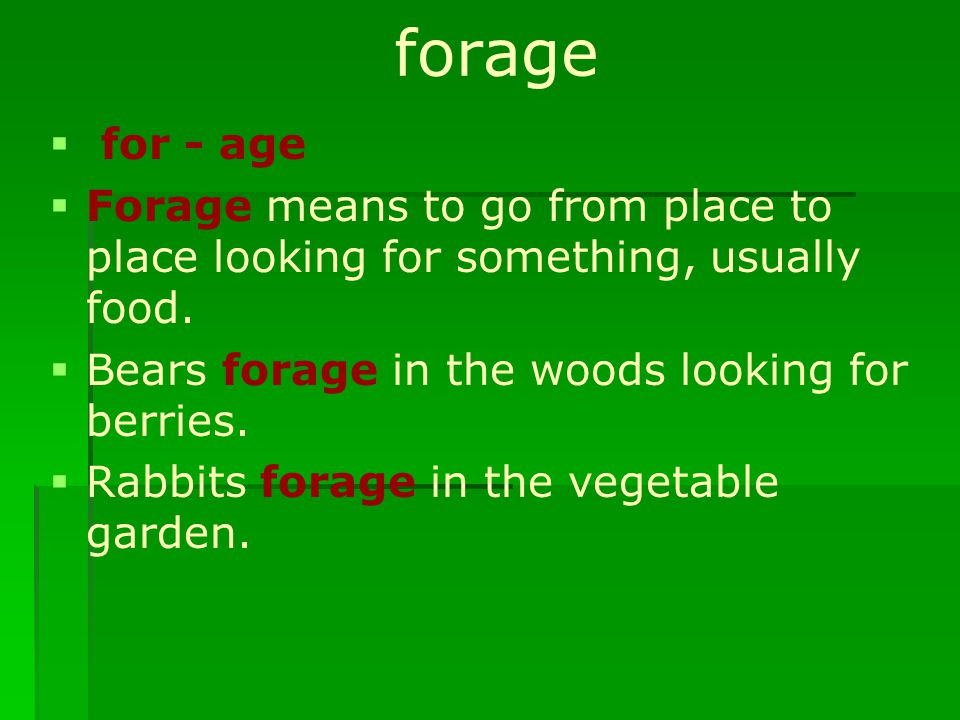 forage   for - age   Forage means to go from place to place looking for something, usually food.