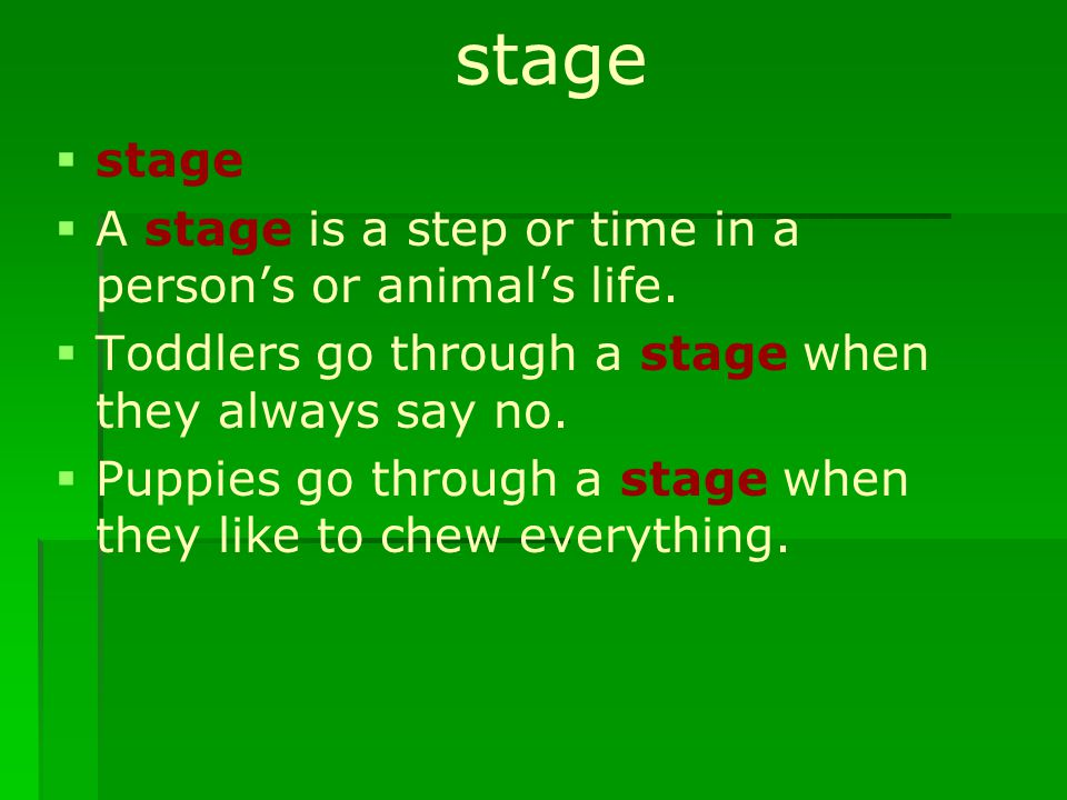 stage   stage   A stage is a step or time in a person's or animal's life.   Toddlers go through a stage when they always say no.   Puppies go