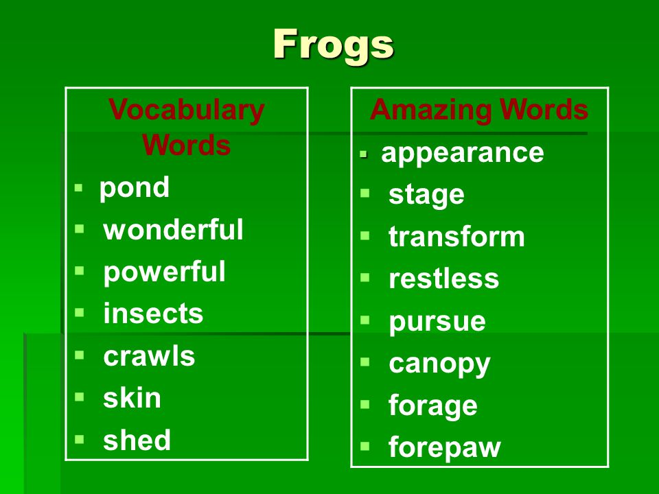 Frogs Vocabulary Words  pond  wonderful  powerful  insects  crawls  skin  shed Amazing Words   appearance  stage  transform  restless  pursue  canopy  forage  forepaw