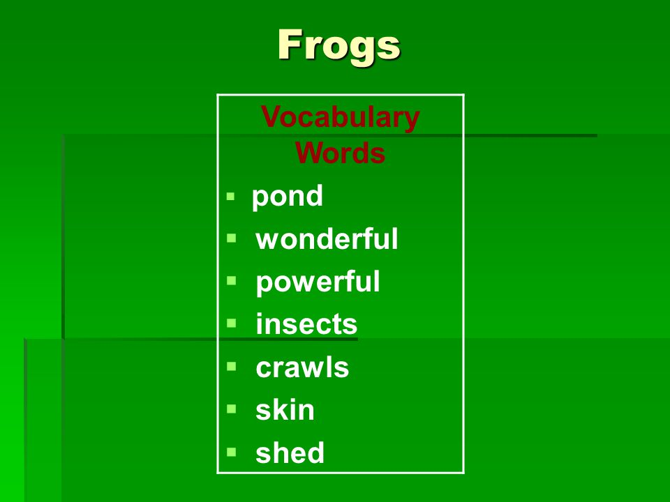 Frogs Vocabulary Words  pond  wonderful  powerful  insects  crawls  skin  shed