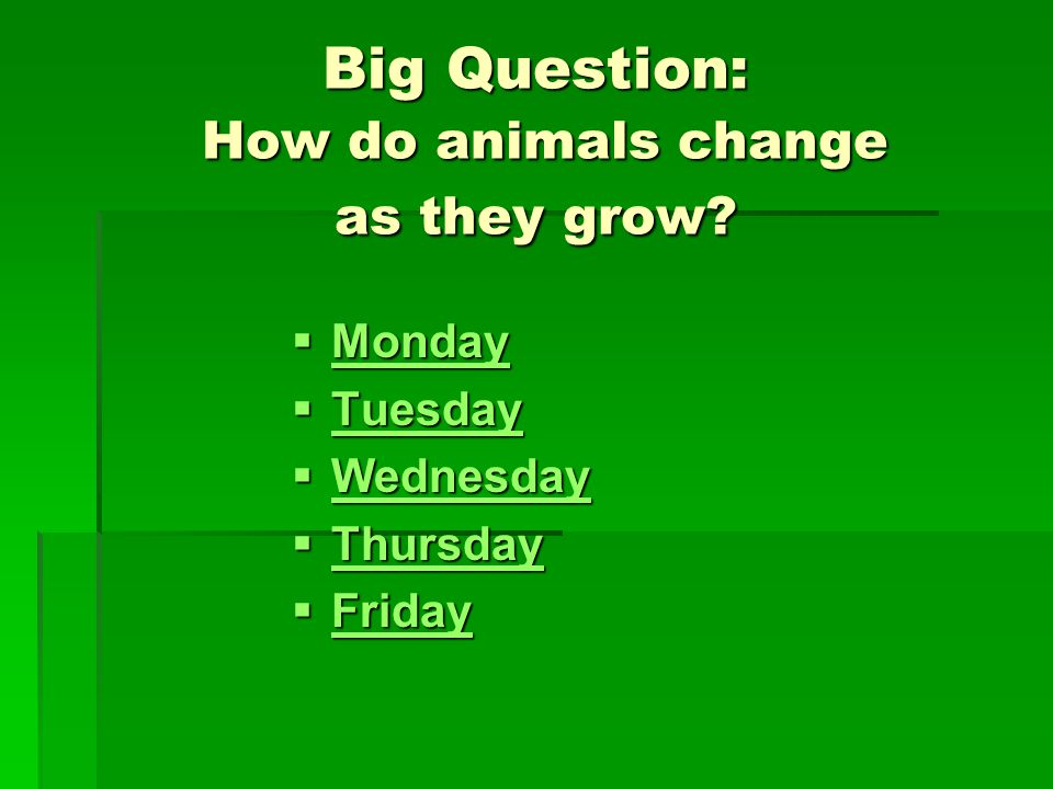 Big Question: How do animals change as they grow.