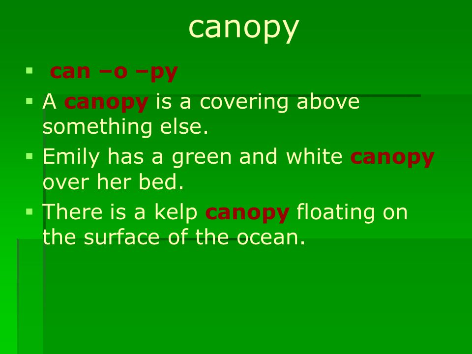 canopy   can –o –py   A canopy is a covering above something else.