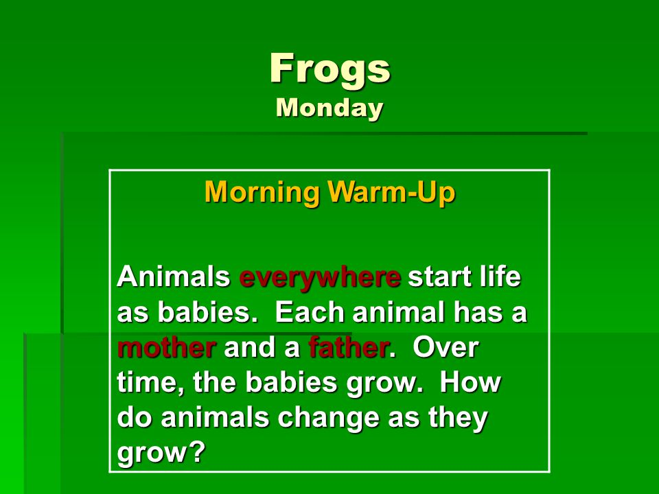 Frogs Monday Morning Warm-Up Animals everywhere start life as babies. Each animal has a mother and a father. Over time, the babies grow. How do animal