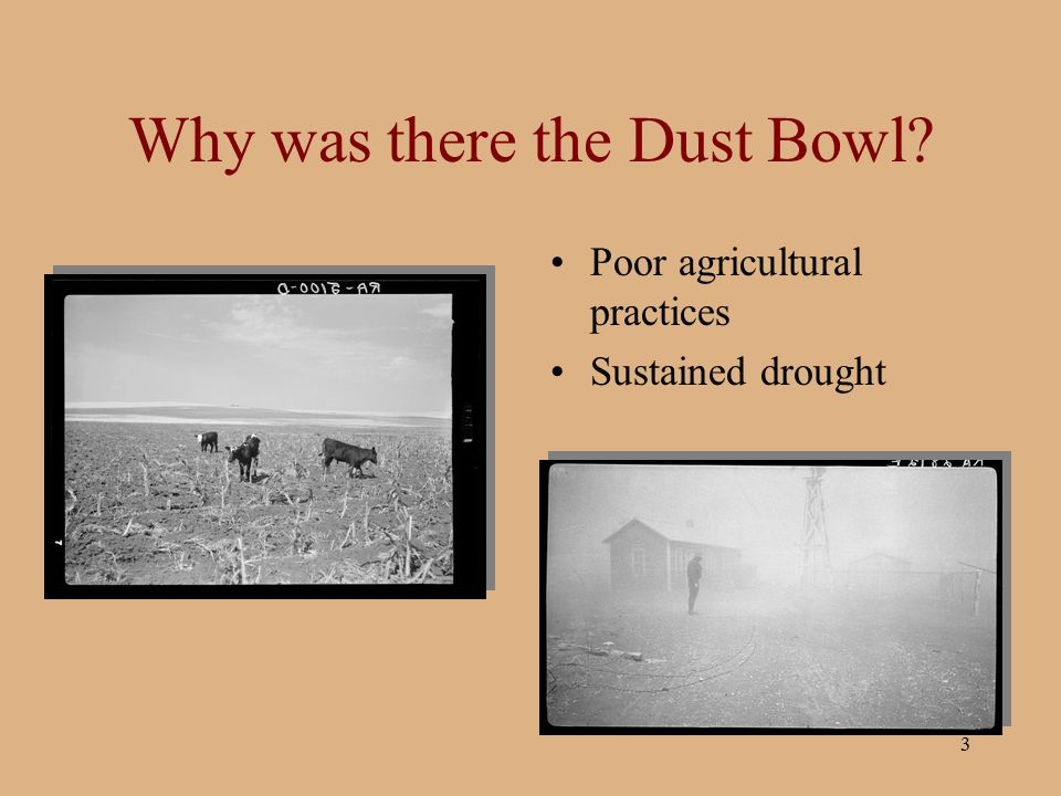3 Why was there the Dust Bowl? Poor agricultural practices Sustained drought