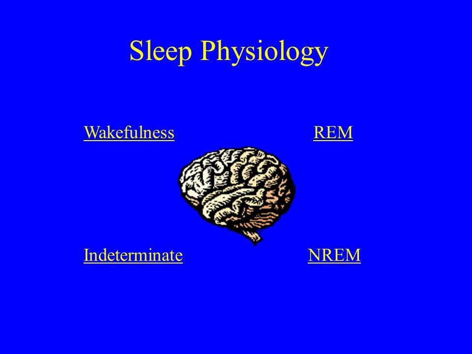 Sleep Physiology WakefulnessREM IndeterminateNREM