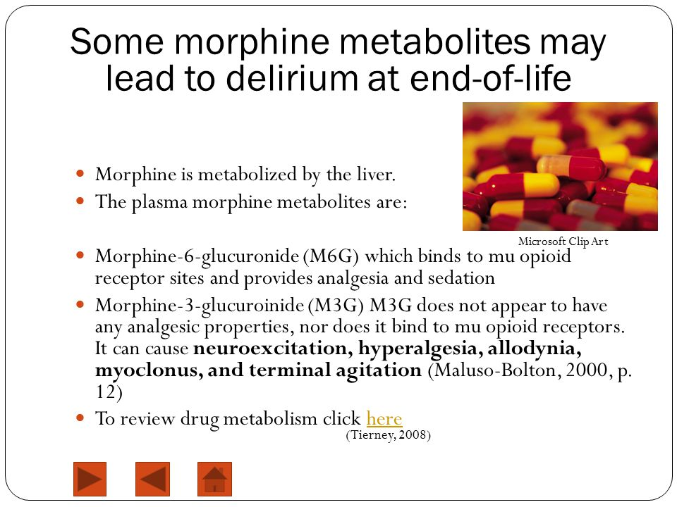 Morphine is metabolized by the liver.