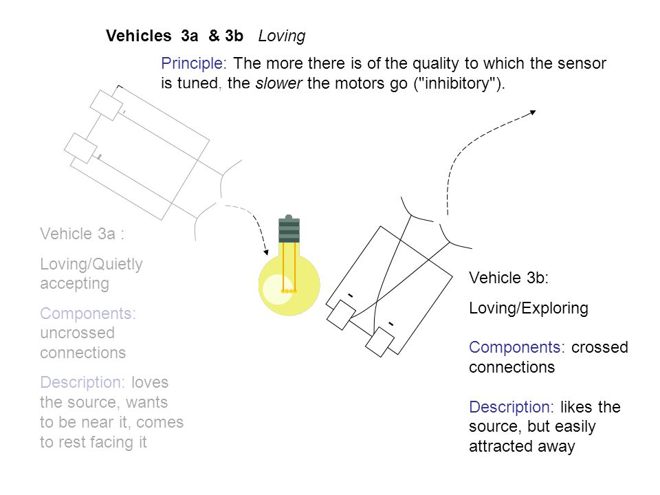 - - Vehicles 3a & 3b Loving Vehicle 3a : Loving/Quietly accepting Components: uncrossed connections Description: loves the source, wants to be near it, comes to rest facing it Vehicle 3b: Loving/Exploring Components: crossed connections Description: likes the source, but easily attracted away -- Principle: The more there is of the quality to which the sensor is tuned, the slower the motors go ( inhibitory ).