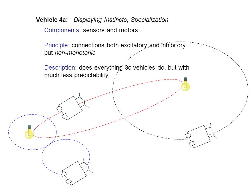 Components: sensors and motors Principle: connections both excitatory and inhibitory but non-monotonic Description: does everything 3c vehicles do, but with much less predictability.