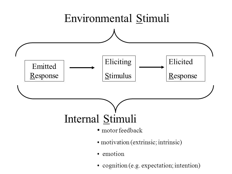 Eliciting Stimulus Elicited Response Emitted Response Environmental Stimuli Internal Stimuli motor feedback motivation (extrinsic; intrinsic) emotion cognition (e.g.