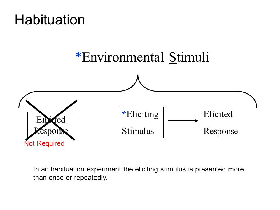 *Eliciting Stimulus Elicited Response *Environmental Stimuli Emitted Response Not Required Habituation In an habituation experiment the eliciting stimulus is presented more than once or repeatedly.