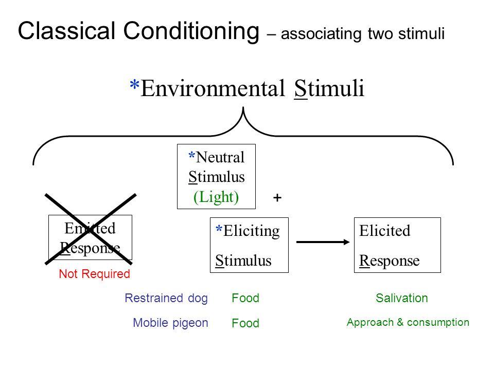 *Eliciting Stimulus Elicited Response *Environmental Stimuli Emitted Response Not Required *Neutral Stimulus (Light) + FoodSalivationRestrained dog Fo