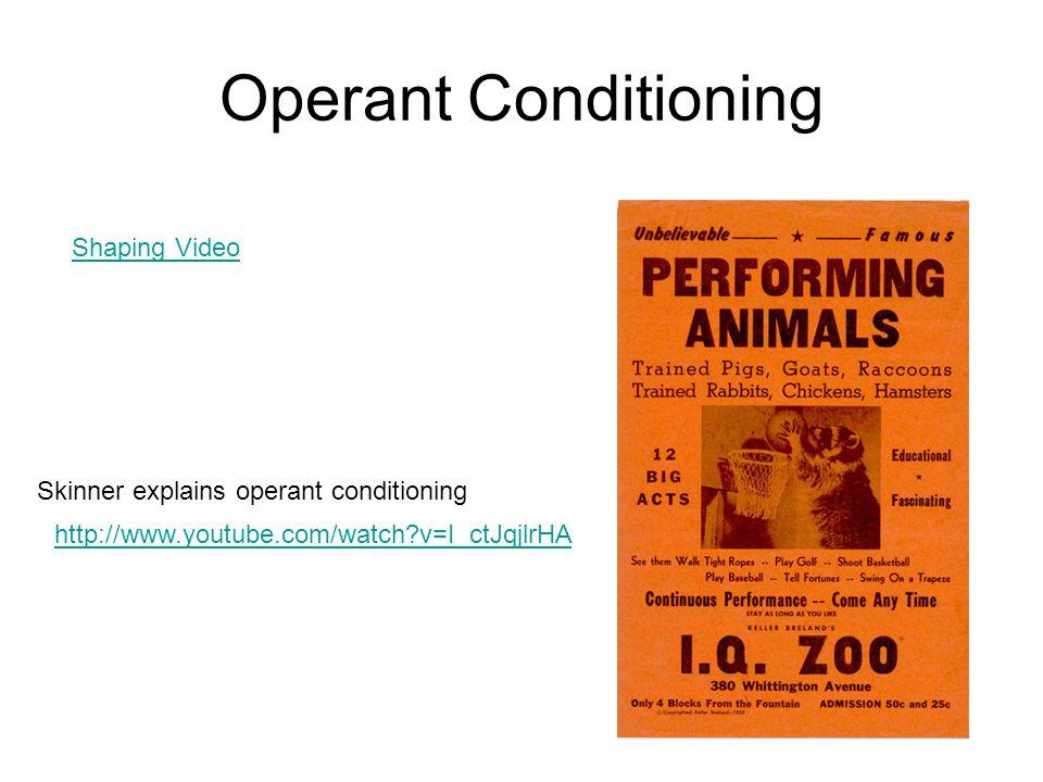 Operant Conditioning Shaping Video Skinner explains operant conditioning http://www.youtube.com/watch?v=I_ctJqjlrHA