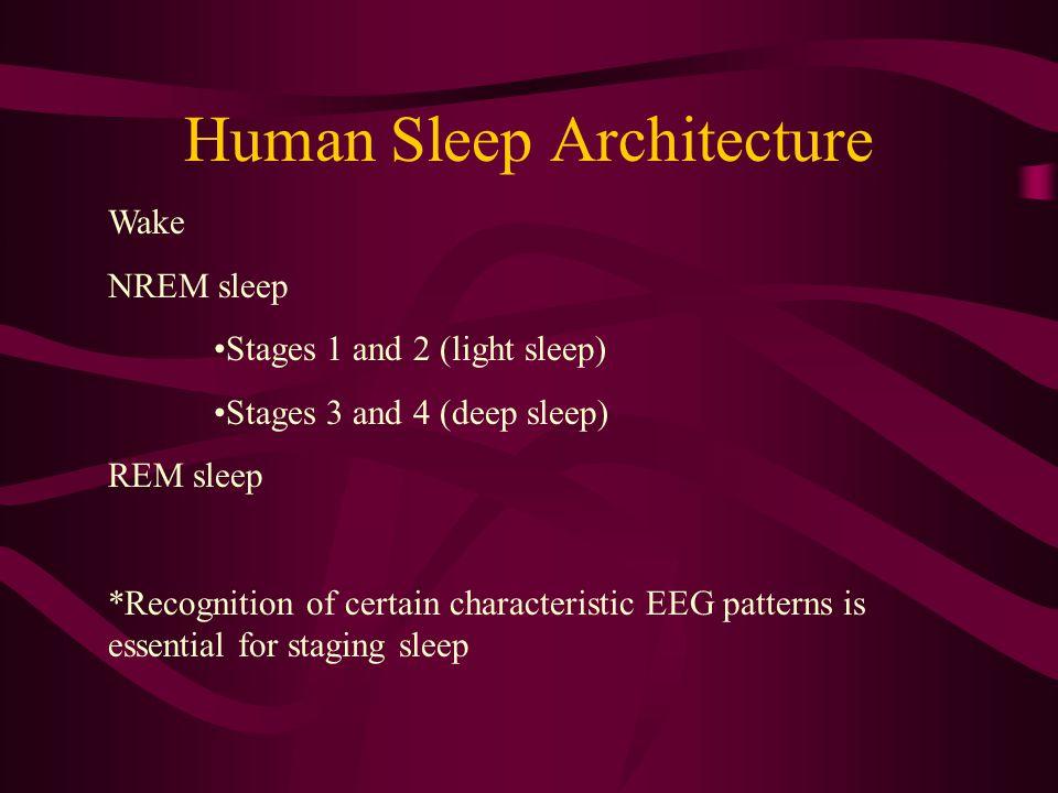 Polysomnography Electrocardiography (EKG) Electroencephalography (EEG) Electro-oculography (EOG) Electromyography (EMG) Pulse Oximetry Respiration: -E