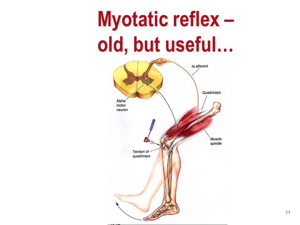 11 Myotatic reflex – old, but useful…