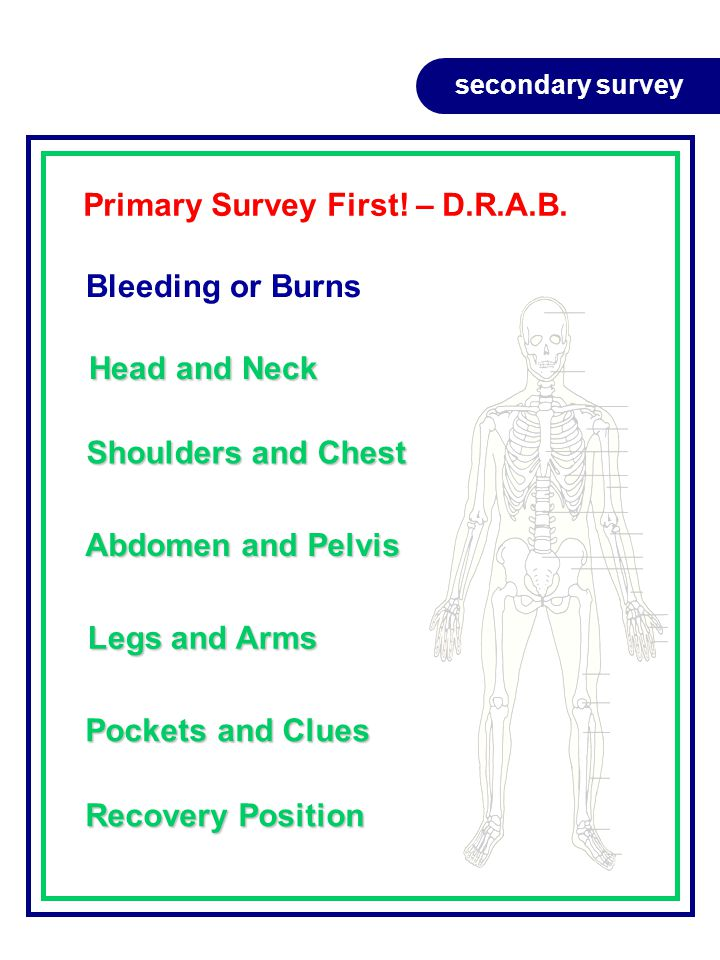 secondary survey Primary Survey First.– D.R.A.B.