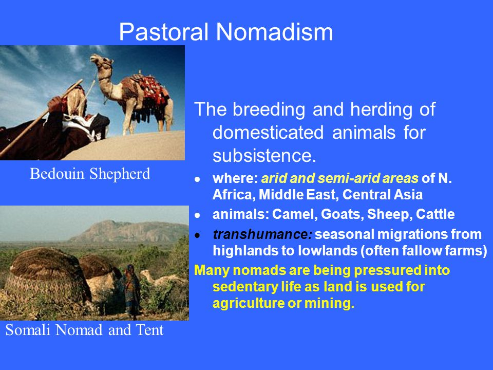Pastoral Nomadism The breeding and herding of domesticated animals for subsistence.  where: arid and semi-arid areas of N. Africa, Middle East, Centr
