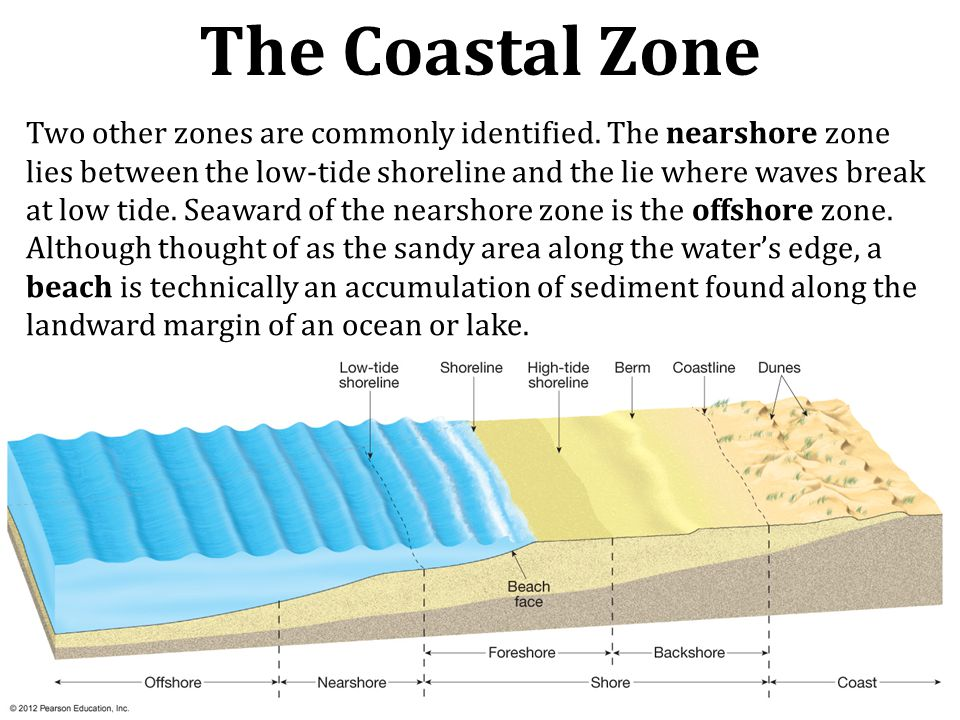 Two other zones are commonly identified. The nearshore zone lies between the low-tide shoreline and the lie where waves break at low tide. Seaward of