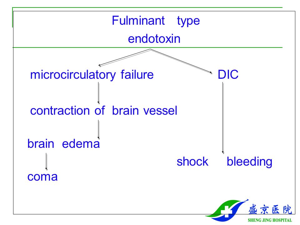 Fulminant type endotoxin microcirculatory failure DIC contraction of brain vessel brain edema shock bleeding coma