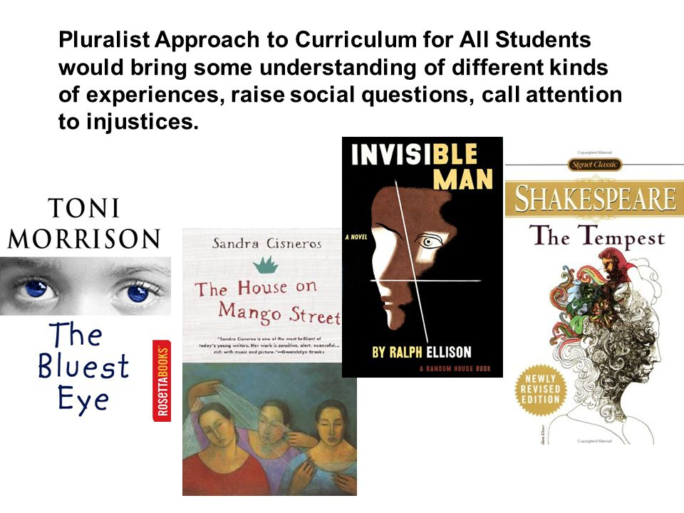 Pluralist Approach to Curriculum for All Students would bring some understanding of different kinds of experiences, raise social questions, call attention to injustices.
