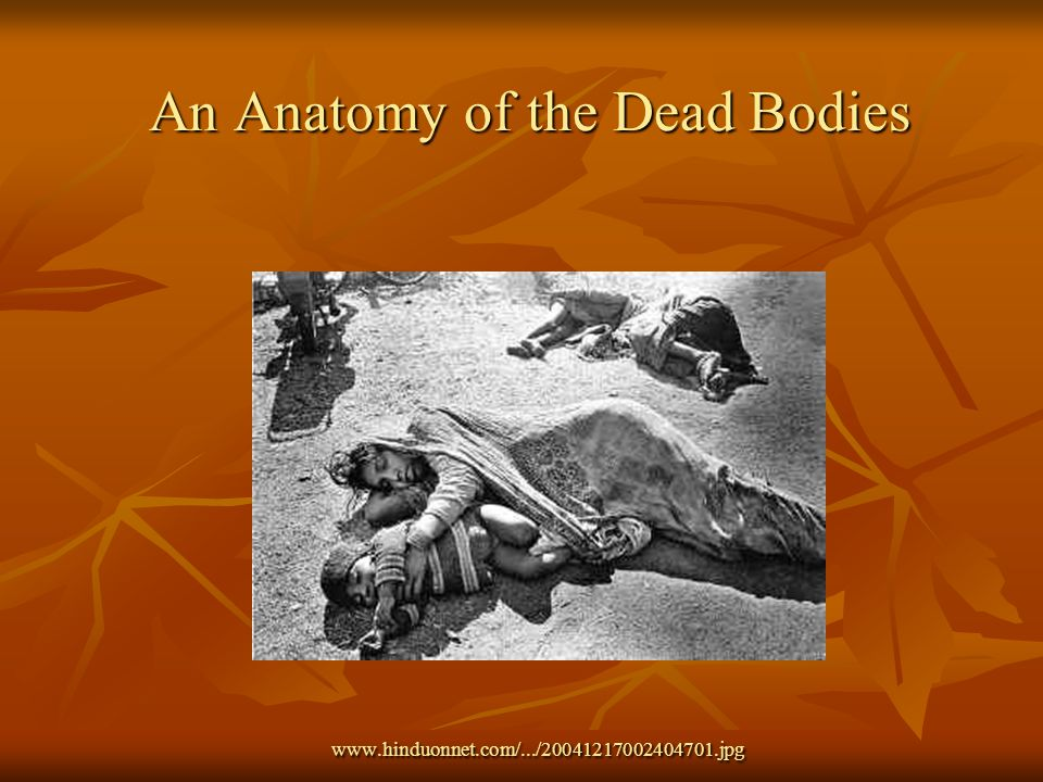 An Anatomy of the Dead Bodies www.hinduonnet.com/.../20041217002404701.jpg