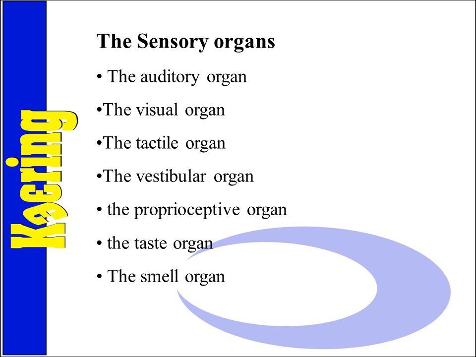 The Sensory organs The auditory organ The visual organ The tactile organ The vestibular organ the proprioceptive organ the taste organ The smell organ