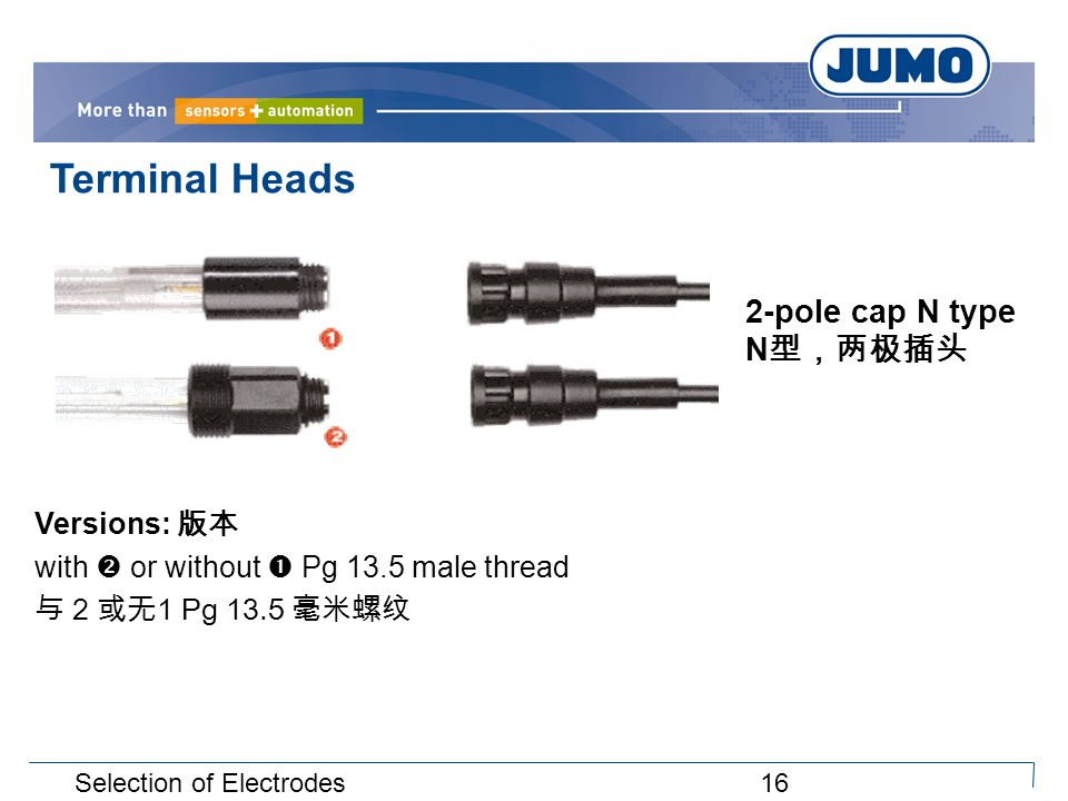 16Selection of Electrodes Terminal Heads Versions: 版本 with  or without  Pg 13.5 male thread 与 2 或无1 Pg 13.5 毫米螺纹 2-pole cap N type N 型,两极插头