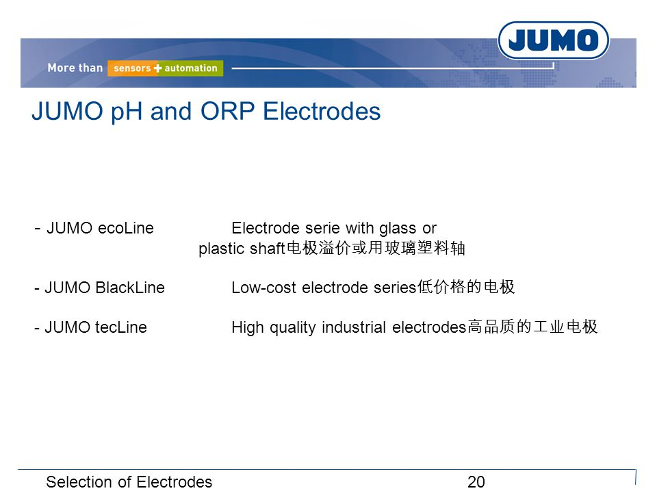 20Selection of Electrodes JUMO pH and ORP Electrodes - JUMO ecoLineElectrode serie with glass or plastic shaft 电极溢价或用玻璃塑料轴 - JUMO BlackLineLow-cost electrode series 低价格的电极 - JUMO tecLineHigh quality industrial electrodes 高品质的工业电极