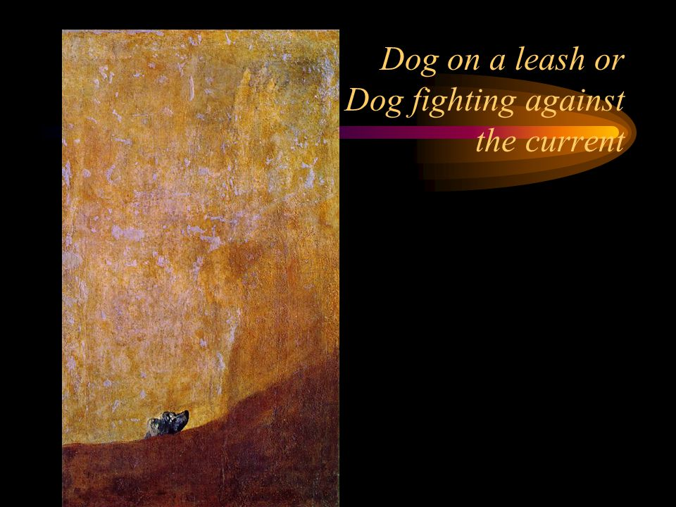 Dog on a leash or Dog fighting against the current