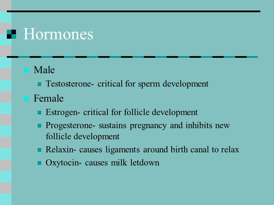 Hormones Male Testosterone- critical for sperm development Female Estrogen- critical for follicle development Progesterone- sustains pregnancy and inh