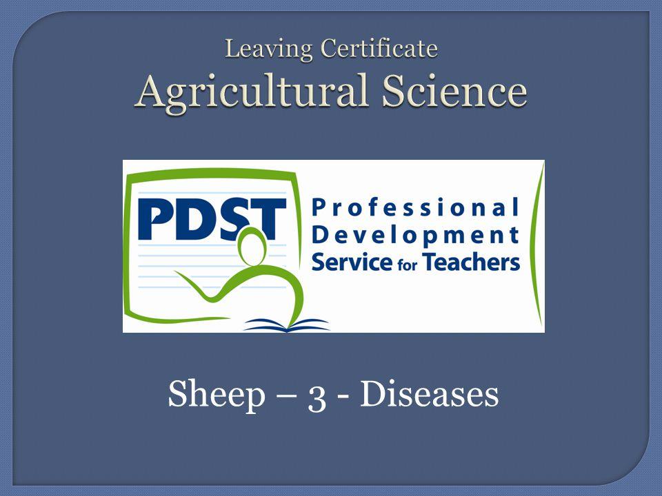 Sheep – 3 - Diseases