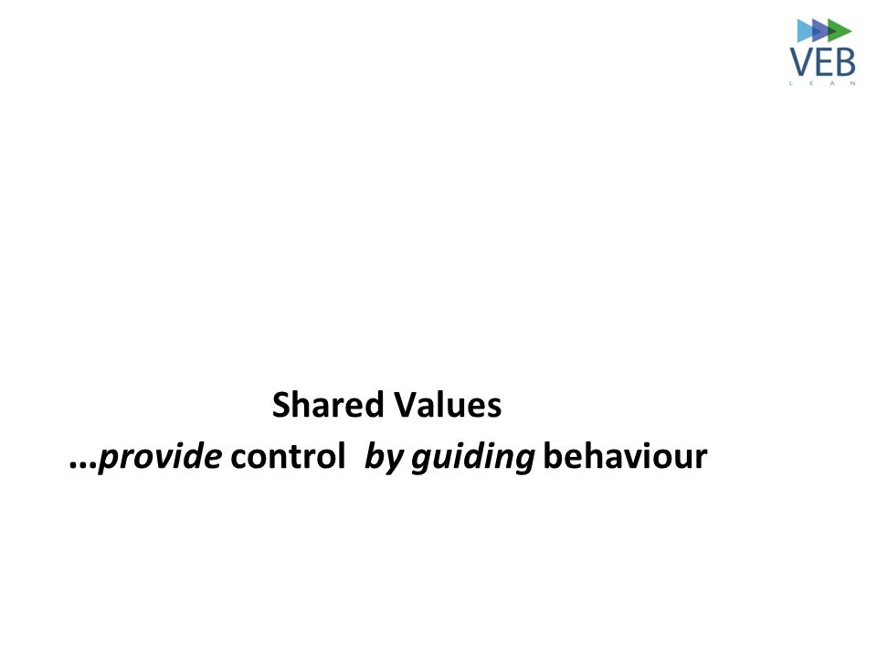 Shared Values … provide control by guiding behaviour
