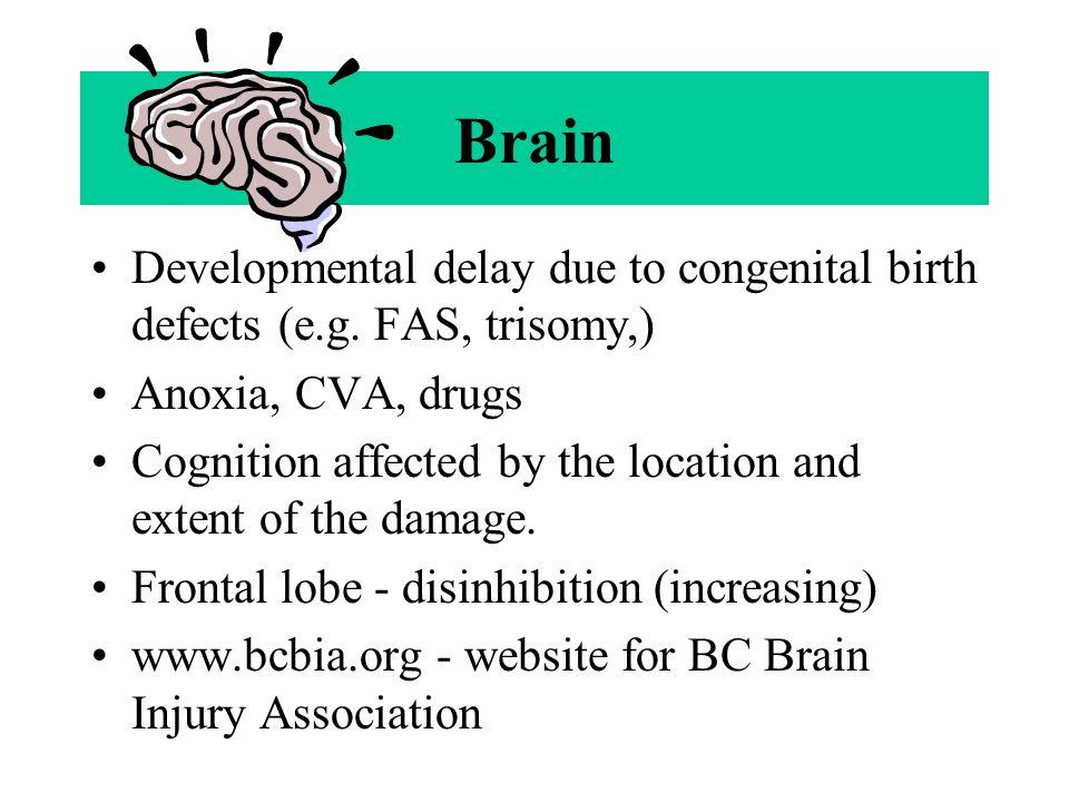 Brain Developmental delay due to congenital birth defects (e.g.